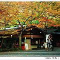 京都生活24
