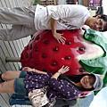021409 -- 大湖草莓日