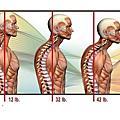 頭痛專欄、肩關節專欄