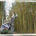 2008.1.5 新竹6號花園