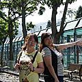 第二天景點-香港鐵路博物館+跑馬地馬場