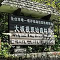 2011.11三峽大板根森林遊區