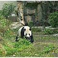 2014-0108【台北】木柵動物園