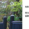 2010_10_28_03翠綠與活力的角館