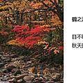 2010_10_28_02秋天的暖色系