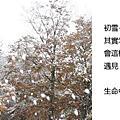 2010_10_26_02生命中的第一場雪