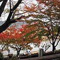 京都--嵐山