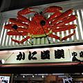 大阪--心齋橋  、  道頓堀  、  難波