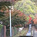 京都--南禪寺、 永觀堂 、平安神宮 、 京都美術館