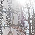 東京Day2淺草寺 in Japan