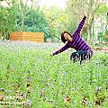 2013.2.11台南百花祭