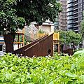 20180909圖書館北大分館+龍學公園(10Y3M&6Y8M)