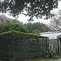 - 台 大 -2005/01/03*