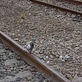 2006/07/22 基隆散心半日遊