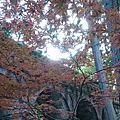 20151021 (4) 蹴上インクライン.南禅寺.水路閣