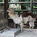 2012-01-27 動物園