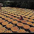 20071020_新埔柿餅節