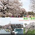 0331飛鳥山櫻花