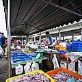 澎湖第三魚市場與傳統市場