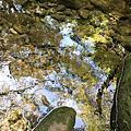 坪頂古圳步道,內雙溪古道,竹篙山,絹絲瀑布(20161002)