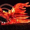 2012年台中市文心公園「龍」的元宵燈展