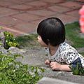 田尾公路花園[將園]