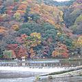 2010京都賞楓之嵐山