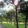 旅人.台北.大安森林公園