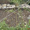 [議題] 2009行水區違法傾倒廢土資料照片