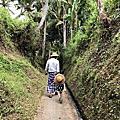 峇里島巴東省農事體驗