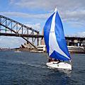 我在,南半球 - 悠遊 Sydney