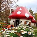 花蓮 花見幸福蘑菇屋