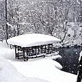 北海道-D3札幌→小樽運河→京極湧水公園→洞爺湖