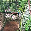 【馬來西亞 吉隆坡】黑風洞Batu Cave神秘的百年印度教聖地