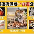 【日本 宮城】貓島體驗 + 一日遊/兩日遊行程規劃推薦