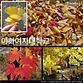 2014 Fall in Seoul