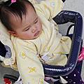 【好物】嬰兒手推車