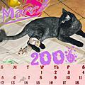 2006年月曆