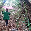 Kiehl's Forest Rain