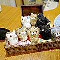20161125日本伊豆熱川貓旅館 Auberge Hasebe