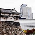 20141101 日本大阪城拍貓