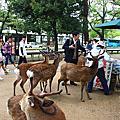 20100512奈良