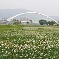 散步天--河濱公園