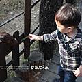 2y2m7d壽山動物園