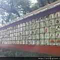 japan- Tokyo東京 明治神宮