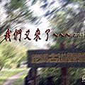 20170408~09跑馬古道第三露