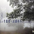 2017/12/30~2018/1/1 苗栗高山青露營(下)