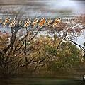 20191030~1101太平山。山毛櫸之秋