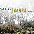 20210401~04春遊太平山 (二) 鐵杉林步道