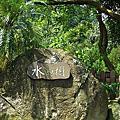 第37露苗栗南庄水與樹莊園露營區